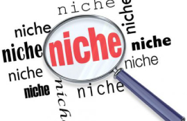 niche products